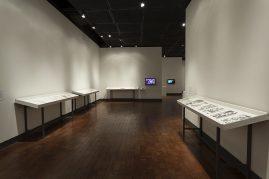Begovich Gallery 8