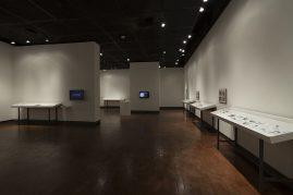 Begovich Gallery 4