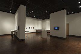Begovich Gallery 1